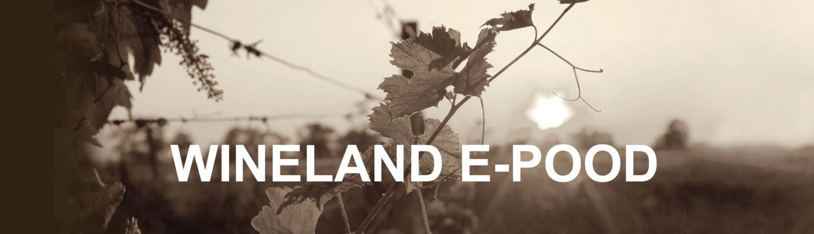 Wineland - Wine Wonderland